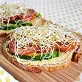 Boke met hummus, avocado, tomaat en alfalfa
