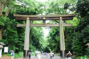 #kokerellenopreis: Japan